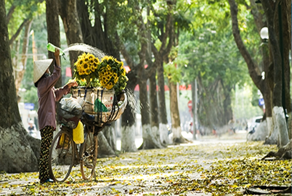 Hanoi city & cooking class 01 day trip